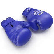 Boxing Gloves Everlast Blue. Preview 2