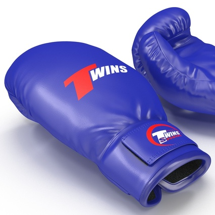 Boxing Gloves Twins Blue. Render 18