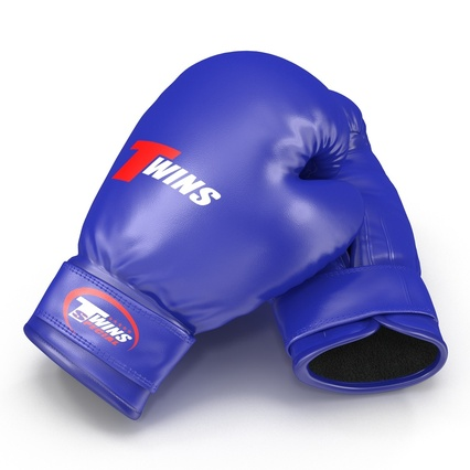 Boxing Gloves Twins Blue. Render 13