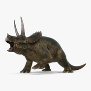 Triceratops Fighting Pose