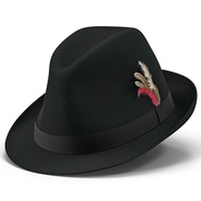 Fedora Hat 2. Preview 2