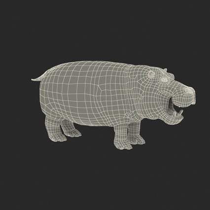 Hippopotamus Rigged for Cinema 4D. Render 3