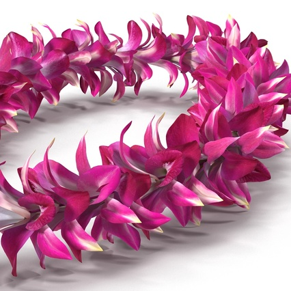 Hawaiian Leis Collection. Render 16