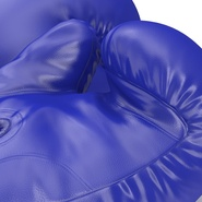Boxing Gloves Blue. Preview 22