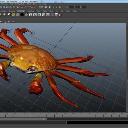 Red Rock Crab Rigged for Maya. Render 24