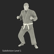 Karate Fighter Rigged for Cinema 4D. Preview 48