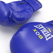 Boxing Gloves Everlast Blue. Preview 15