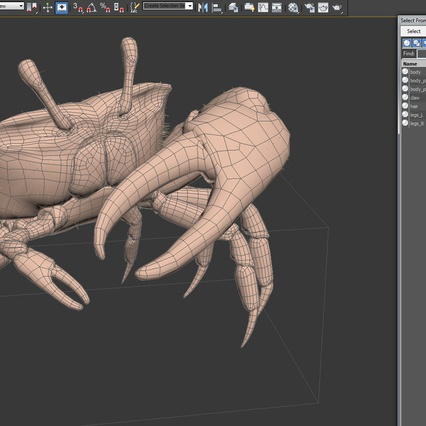 Fiddler Crab Standing Pose with Fur. Render 19