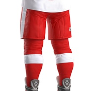 Hockey Equipment Detroit Red Wings. Preview 41